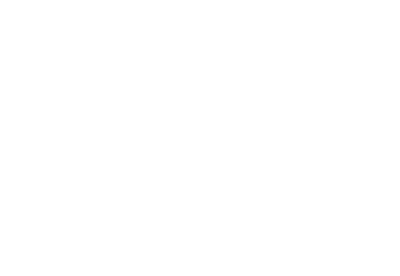 SEO Company Services -  Sapid Agency