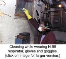cleaningmold